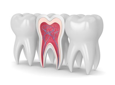Root Canal Therapy - Troy, MI